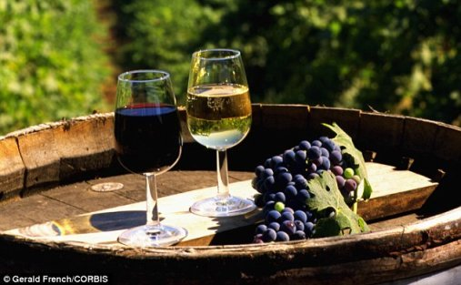 Wine-tasting excursions.